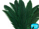 Wholesale Dyed Kelly Green Guinea Fowl Wing Feathers Image 3