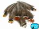 1/4 Lb - Mix Lady Amherst Pheasant Plumage Wholesale Feathers (Bulk
