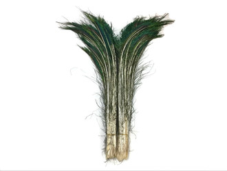 Green iridescent Peacock feathers for crafts, decoration, floral
