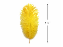 """10 Pieces - 8-10"""" Yellow Ostrich Dyed Drabs Body Feathers"""