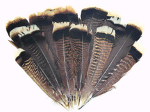 1/4 lb - NATURAL Black and Brown Wild Turkey Tail Wholesale Feathers (bulk)