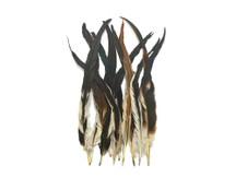 "16-18"" Natural Brown Mix Coque Tail Strung Feathers"