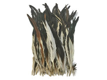 Brown Variety Coque Rooster Tail Feathers Bulk for costumes, floral, jewelry, centerpieces