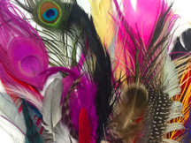 Collection 73 - Mix Random Feather Sample Pack (bulk)