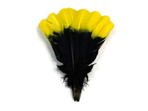 1/4 Lb - Yellow & Black Two Tone Turkey Round Tom Wing Secondary Quill Feathers