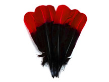 1/4 Lb - Red & Black Two Tone Turkey Round Tom Wing Secondary Quill Feathers