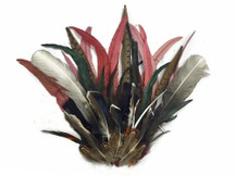 Collection 81 - Mix Random Feather Sample Pack (bulk)