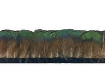 1 Yard - Iridescent Green Bronze Golden Pheasant Tippet Feather Trim