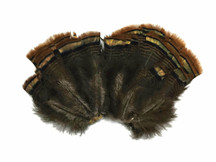 2 Sets - Natural Merrium Small Wild Turkey Tail Feathers