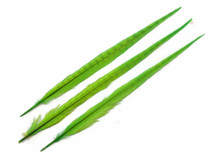 "10 Pieces - 20-22"" LIME GREEN Long Ringneck Pheasant Tail Feathers"