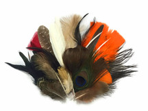 Collection 89 - Mix Random Feather Sample Pack (Bulk)