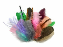 Collection 91 - Mix Random Feather Sample Pack (Bulk)