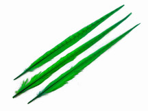 Bright Green Long Ringneck Pheasant Tail Feathers
