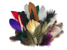 Collection 94 - Mix Random Feather Sample Pack (Bulk)