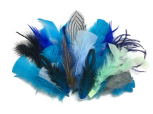 Collection 97 - Mix Random Feather Sample Pack (Bulk)
