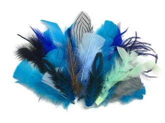 Mix Random Feather Sample Pack (Bulk)