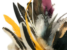 Collection 102 - Mix Random Feather Sample Pack (Bulk)