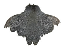 1 Piece  - High Quality Guinea Fowl Natural Polka Dot with Wing Complete Pelt Feathers (Bulk)