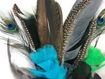Collection 103 - Mix Random Feather Sample Pack (Bulk)