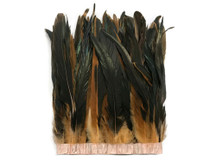 """1 Yard - 10-12"""" Champagne Dyed Over Natural Coque Tails Long Feather Trim (Bulk)"""