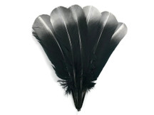1/4 Lb - Silver Metallic Spray Paint Tip Tom Turkey Rounds Imitation Eagle Secondary Feathers (bulk)