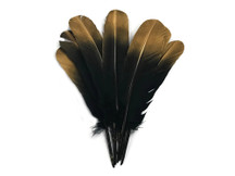 1/4 Lb - Gold Metallic Spray Paint Over Black Tip Tom Turkey Rounds Imitation Eagle Secondary Feathers (bulk)