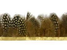 1 Yard - Mustard Yellow Guinea Hen Plumage Feather Trim