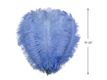 "1/2 Lb - 19-24"" Light Blue Ostrich Extra Long Drab Wholesale Feathers (Bulk)"
