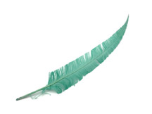5 Pieces - Jade Green Long Ostrich Nandu Trimmed Feathers