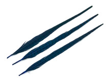 "10 Pieces - 20-22"" Blue Dyed Over Natural Long Ringneck Pheasant Tail Feathers"
