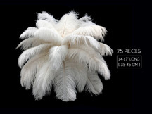 "25 Pieces - 14-17"" Off White Ostrich Drab Centerpiece Feathers Sets"