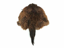 1 Piece - Complete Natural Ringneck Pheasant Hen Pelt With Wing And Tails