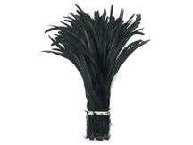 "1/2 Lb - 14-16"" Black Strung Natural Bleach And Dyed Coquetail Wholesale Feathers (Bulk)"