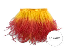 10 Yards - Fiery Red Ombre Ostrich Fringe Trim Wholesale Feather (Bulk)