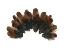 10 Pieces - Natural Red and Black Partridge Plumage Feathers