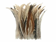 "Wholesale Pack - 8-12"" Natural Beige Mix Coque Tail Strung Rooster Feathers 2 Oz. (Bulk)"