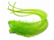 6 Pieces - Solid Lime Thick Long Rooster Hair Extension Feathers
