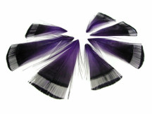 1 Dozen - Purple Golden Pheasant Tippet Feather