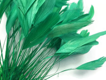 1 Dozen - Kelly Green Stripped Rooster Coque Tail Feathers