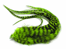 6 Pieces - Lime Green Thick Long Grizzly Rooster Hair Extension Feathers
