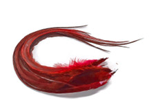 6 Pieces -  Solid Red Thick Long Rooster Hair Extension Feathers