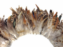 4 Inch Strip - Brown Chinchilla Strung Rooster Schlappen Feathers
