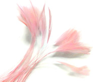 1 Dozen - PINK Stripped Rooster Neck Hackle feather