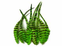 1 Dozen - Short Lime Green Grizzly Rooster Saddle Feathers