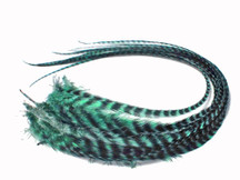 6 Pieces - Mint Green Thick Long Grizzly Rooster Hair Extension Feathers