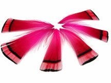 1 Dozen - Hot Pink Golden Pheasant Tippet Feather