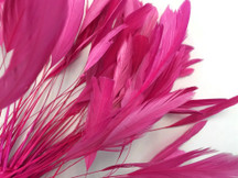 1 Dozen - Hot Pink Stripped Coque Tail Feathers