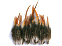 12 Pieces - Furnace Short Rooster Hackle Hair Extension Feathers