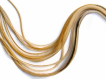 6 Pieces - XL Light Honey Ginger Thin Extra Long Rooster Hair Extension Feathers