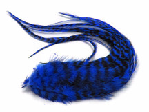 6 Pieces - Royal Blue Thick Long Grizzly Rooster Hair Extension Feathers